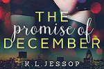 This Promised December Blog Tour